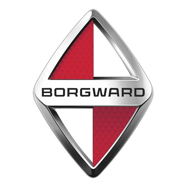 Vendere auto incidentata borgward