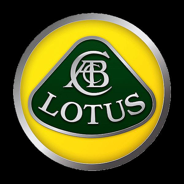 Vendere auto incidentata lotus