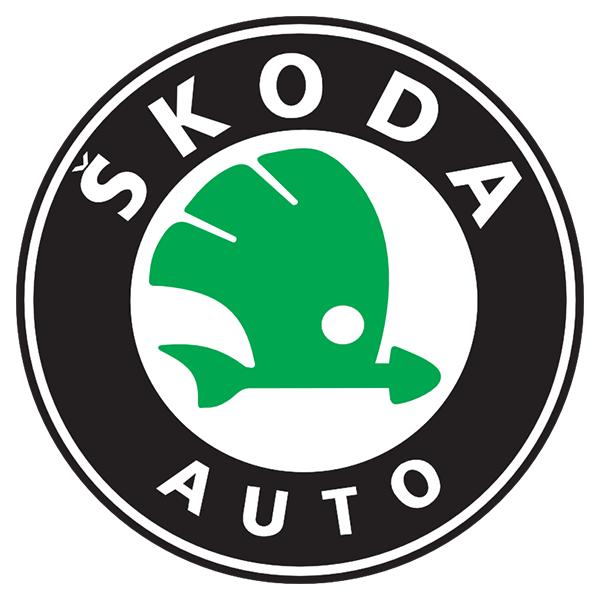 Vendere auto incidentata skoda